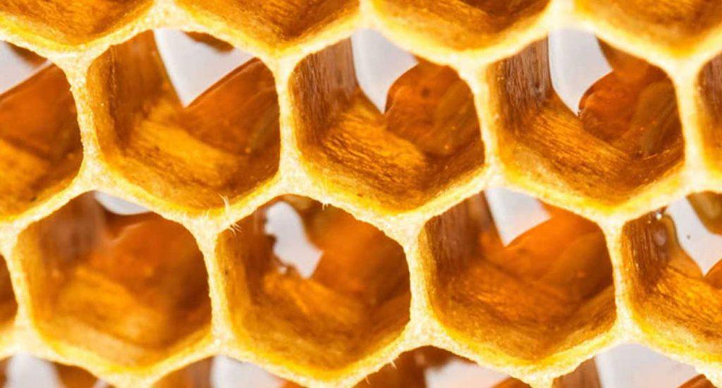 از بین بردن شوره سر با عسل
