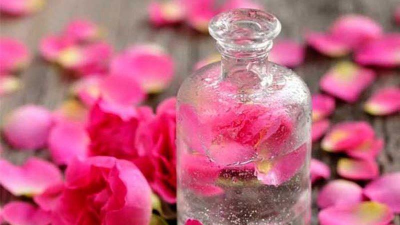 خواص گلاب