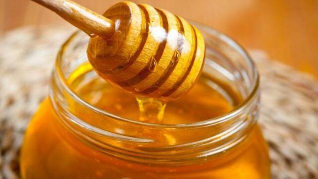 درمان نیش حشرات با عسل