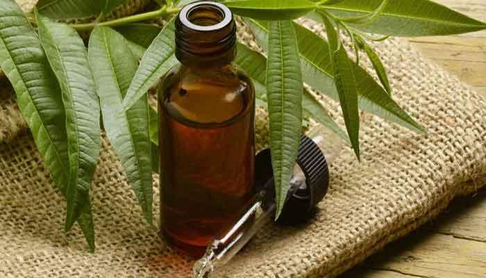 روغن درخت چای موثر در رفع تیرگی زیر بغل